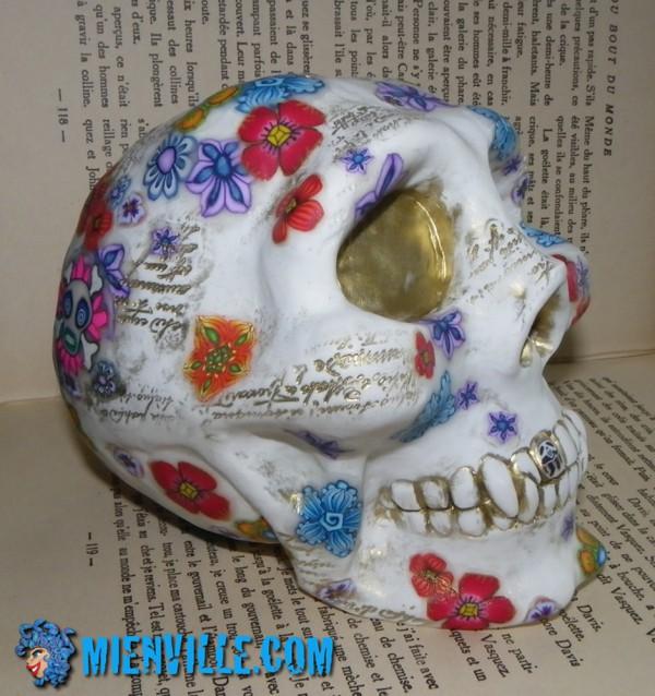 crâne de lecture ou crâne rêveur?
